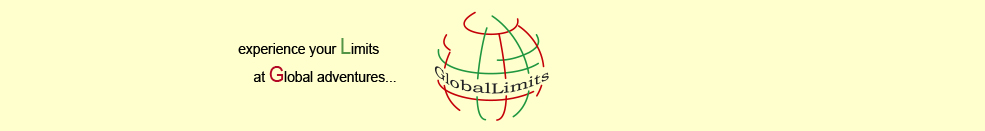 Global-Limits Logo